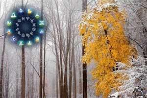 Гороскоп на ноябрь