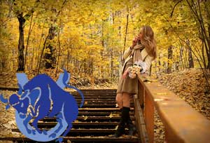 Телец - гороскоп на сентябрь