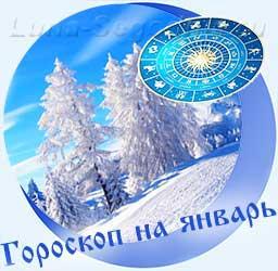 Гороскоп на январь, снежный лес.