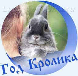 Кролик на плече у девушке
