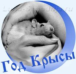Крыса в руке