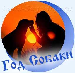 Собака с девушкой на закате