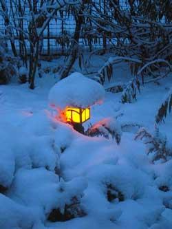 Лунный календарь огородника на Январь