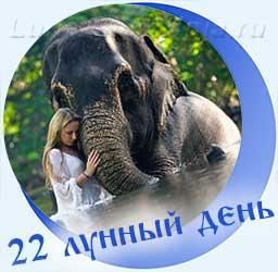Символ 22-го лунного дня - Слон