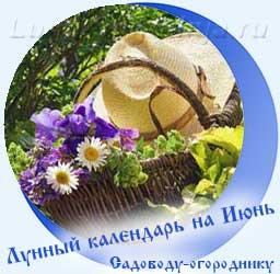 Лунный календарь огородника на Июнь, корзина с цветами