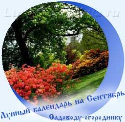 Лунный календарь огородника на Сентябрь, краснеющие листья