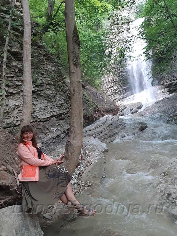 На стволе дерева у Нихолаевских водопадов в Чеченской Республике