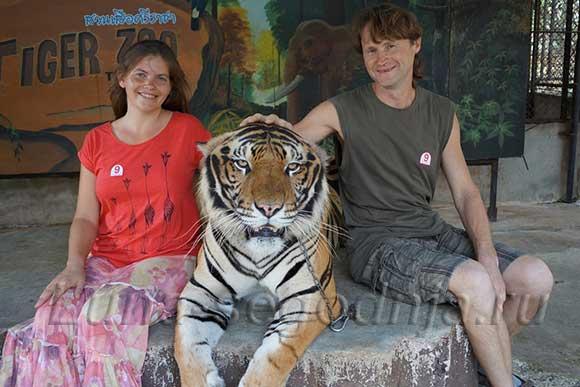 Фото с тигром в Тайланде
