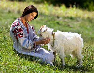 Гороскоп для Козы (Овцы)