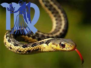 Дева-Змея характеристика