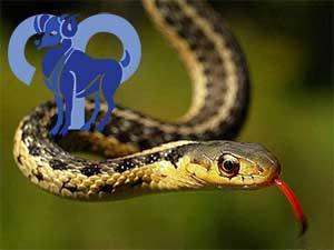 Овен-Змея характеристика