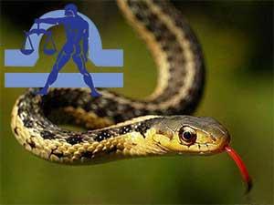 Весы-Змея характеристика