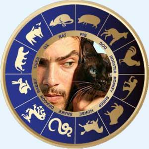Мужчина-Кот (Кролик) - совместимость