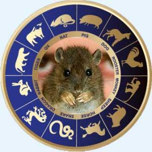 Мужчина-Крыса - совместимость