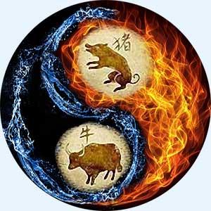 Мужчина-Свинья (Кабан) и женщина-Бык