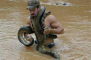 Мужчина Змея