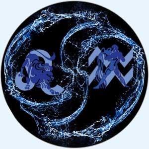 Совместимость лев-водолей