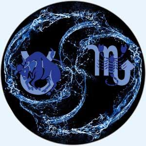 Совместимость Телец-Скорпион