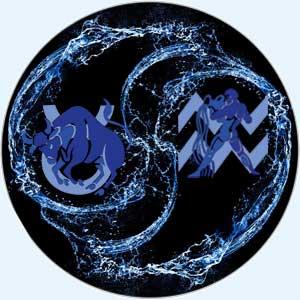 Совместимость телец-водолей