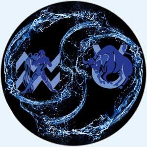 Совместимость водолей-телец